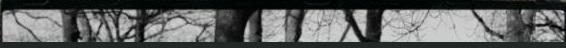 Schonewille Fotografie Drenthe en omstreken